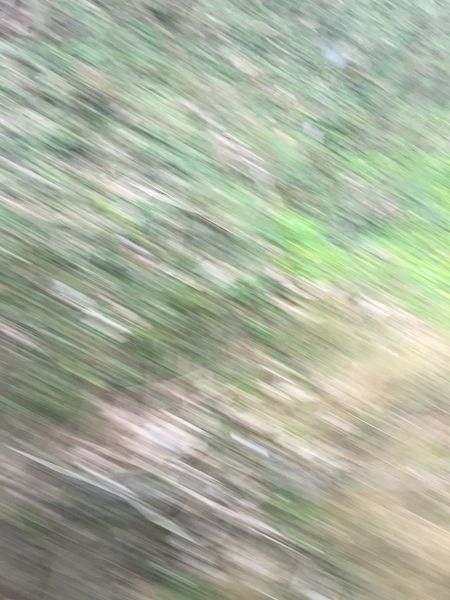 Check This Out Fresh on Market Green Speed Grass Grassy First Eyeem Photo Vibrant Colors Lines Relaxing Train Fast Blurred Motion Motion Motion Blur Nature Birmingham
