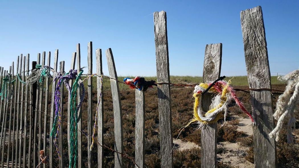 Reclaimed Fishing Nets Washed Up On Beach Beach Access Beach Walk Opme⛱ Maine EyeEm Best Shots Maine Photography 🌲 S6