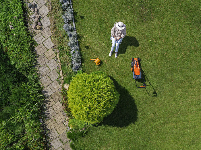 High angle view of man holding leaf in lawn