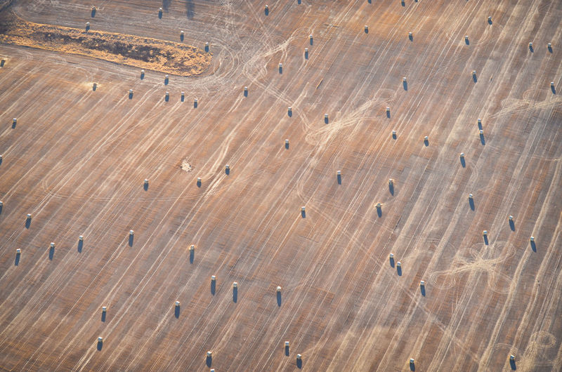 High Angle View Aerial View Aerial Aerial Photography Field Farm Farming Agriculture Harvest Bales Baleage Silage Animal Feed Livestock Feed  Corn Landscape Environment Land MidWest South Dakota Earth Rural Scene Rural Pattern