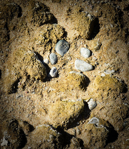 River bed absent of water Close-up Day Nature Outdoors Platte River Rock - Object Sand South Of Lingle Wyoming Textured
