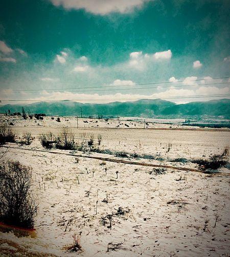 Train Nature Sofia, Bulgaria Bulgaria Winter Snow ❄