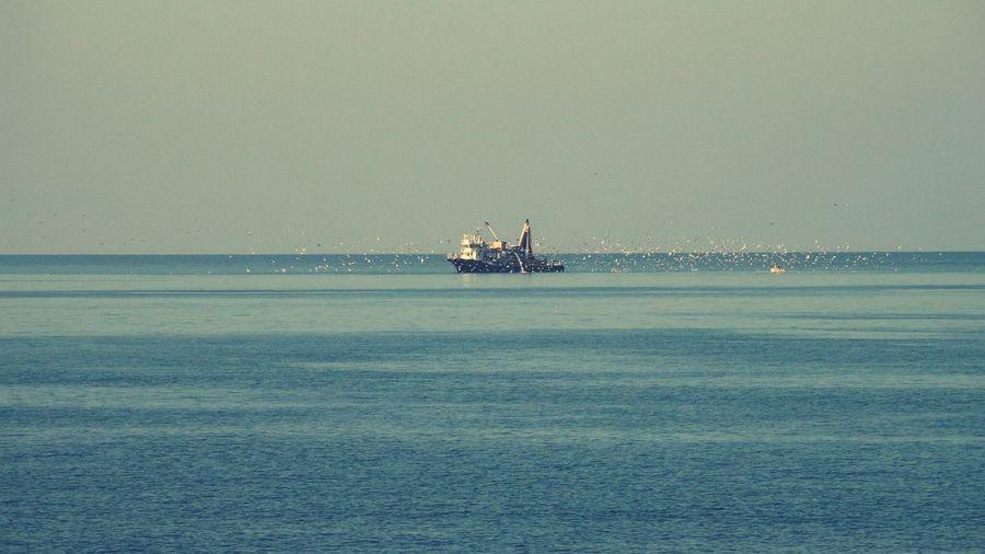 Nature Senoz Karadeniz Turkey