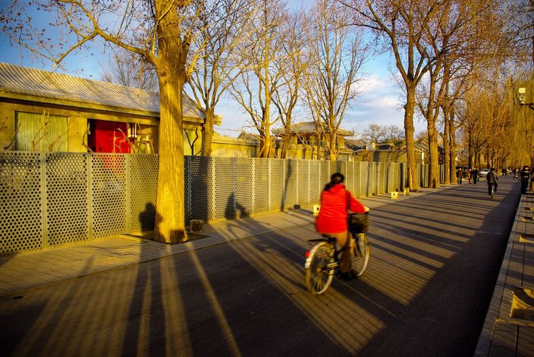 Spectacular lights and shadows when I was romaning near a lake in Beijing. Touched by a normal woman cycling passed by. It was so amazing moment, I never forget. Full Length Transportation Bicycle Travel Rear View Outdoors Cycling China In My Eyes Beijing, China Beijing Trip BEIJING北京CHINA中国BEAUTY Travel Destinations Beijing Scenes Beijing China Catch The Moment Street Photography Streetphotography Light And Shadow light and reflection Tranquility Tranquil Scene Travel The Street Photographer - 2017 EyeEm Awards Been There.