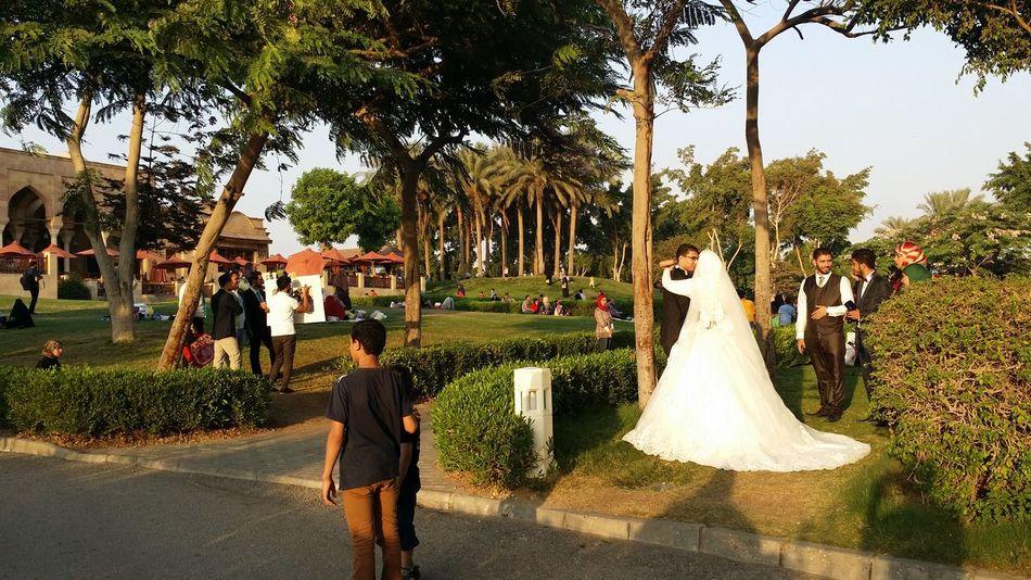 Azhar Jaan Day Shots Green Husband Outdoors Real People Tree Wedding Wedding Dress Wife