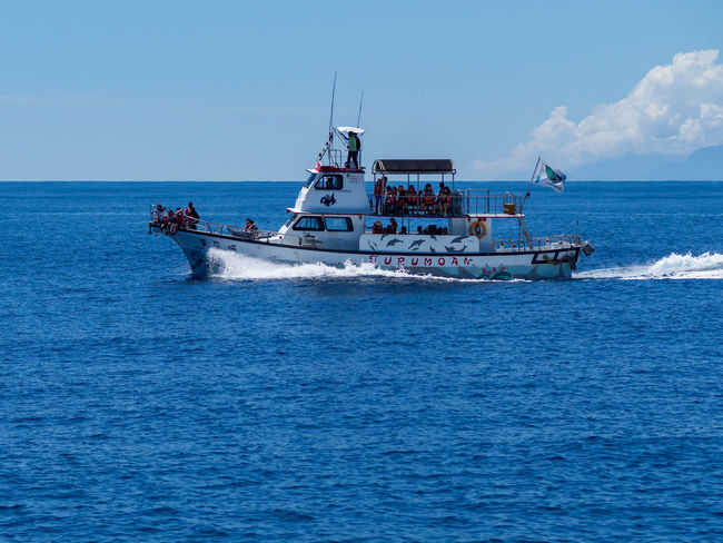 Dolphin Watching Beauty In Nature Blue Cloud - Sky Day Fishing Boat Fishing Industry Horizon Horizon Over Water Mode Of Transportation Motion Nature Nautical Vessel Outdoors Real People Sailing Scenics - Nature Sea Sky Transportation Travel Water Waterfront