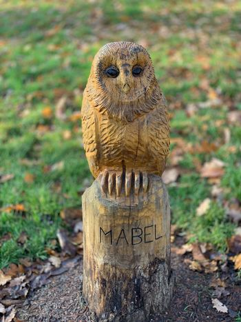 Mabel The Owl Statue Bird Carving Carved Wood Animal Themes Focus On Foreground Animal No People Day One Animal Land Nature Art And Craft Owl Close-up Representation Animal Representation