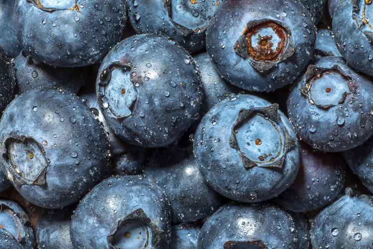 Full frame shot of wet blueberries