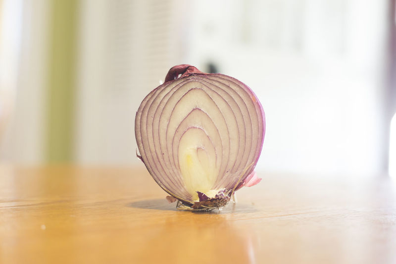 A red onion on a wooden table. Animal Themes Animals In The Wild Close-up Cooking Day Fragility Freshness Indoors  Nature No People One Animal Onion Red Onion Water