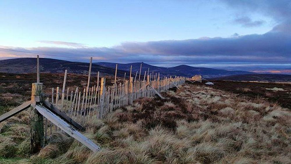 Last Light - Sunset on Cairn o' Mount looking north towards Banchory. Sunset Lastlight Fence Rustic Highlight Bluetones Rustic Beautiful Glow Sky Cairnomount Aberdeenshire Banchory Landscape POTD Photooftheday Visitaberdeenshire Visitabdn VisitScotland