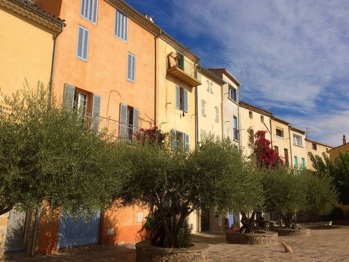 Charming Houses Building Exterior Architecture No People Charming Place Old Places French Riviera Old Houses Olive Trees Tourism Pastel Colors Provence Alpes Cote D´Azur Côte D'Azur Mediterranean  Been There. Provence South Of France Façade Old Town Hyères Architecture Low Angle View Flower Wall
