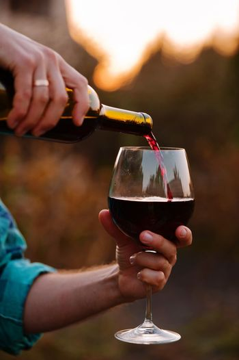 testing a glass of red wine at sunset Alcohol Refreshment Drink Food And Drink Human Hand Hand Glass Adult Wineglass Wine Celebration Household Equipment Focus On Foreground Human Body Part Close-up Holding Women Drinking Glass Men Drinking