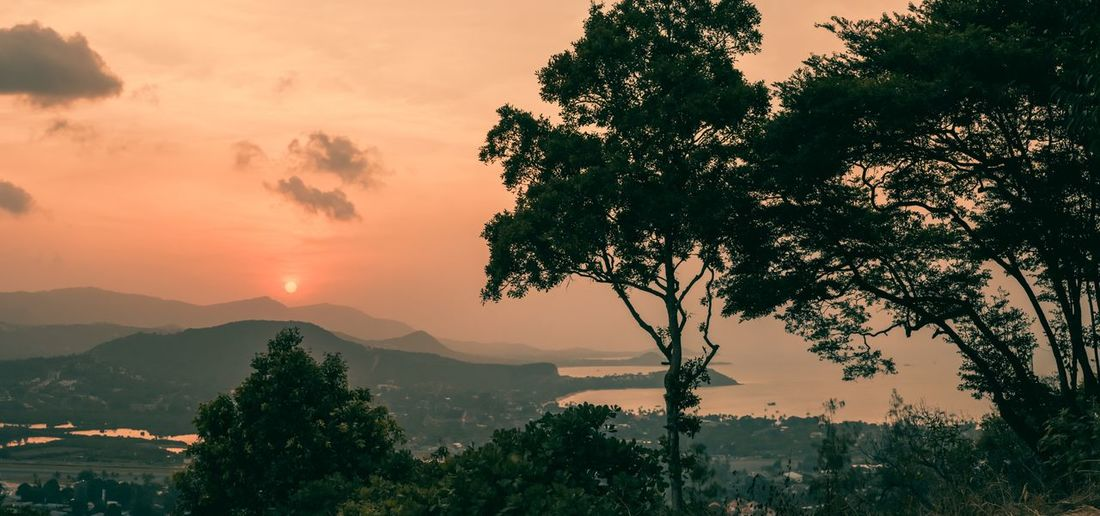 Sunset at samui island Tree Mountain Beauty In Nature Scenics Sunset Nature No People Sky Outdoors Silhouette Landscape Mountain Range