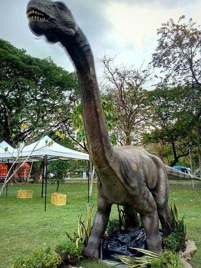 DinosaursAroundTheWorld