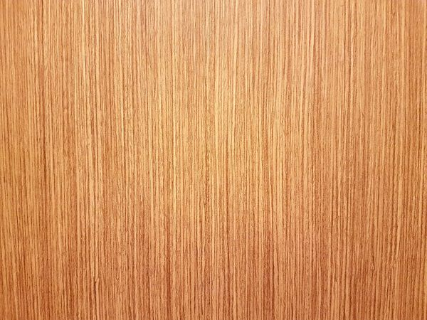 Beautiful brown wooden texture door in a building Brown Wood Wooden Texture Design Beautifil Nature Background Backgrounds Light Indoor Photography Abstract Tree Material Close-up No People Nature Pattern Colored Background Brown Rough Wood Grain Fiber Day
