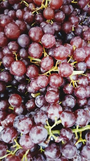 Grape.. Grapes عنب  Food And Drink Freshness Full Frame Food No People Close-up Backgrounds Fruit Red Plant Day Nature Healthy Eating Growth Many More Bunch Branch Wine Wine Not Sommergefühle Food Stories