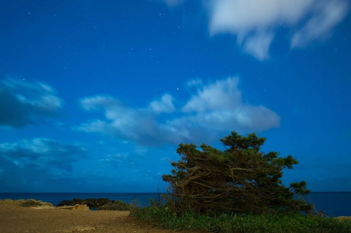 Ibiza night sky ... Nightphotography Night Ibiza Seaside Sea EyeEm Nature Lover Stars Mediterranean  Nature At Night
