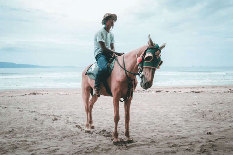 Nature Pet Portraits The Week On EyeEm Travel Traveling Beach First Eyeem Photo Horse Men One Animal One Person People Portrait