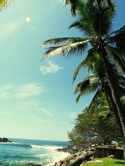 ¡Quiero volver! Imissyou Relaxing Beach
