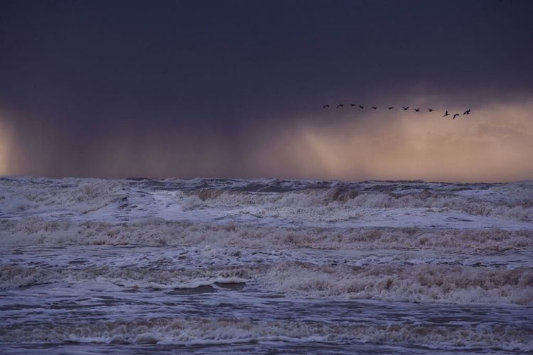 Gathering of the lost souls. Seascape Fotofantast Taking Photos Bloemendaal Aan Zee Stormy Weather Storm Clouds Frozen Waves