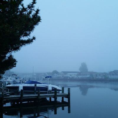 This morning's backyard Weather report - Fog so thick can not even see the water tower, layer this morn should see some sun. Oceancitycool OceanCity Maryland ocmd ocmdphotography everythingoc earthpix itsamazingoutthere igglobalclub love life beachlife nature seascape sunraysig weatherlive