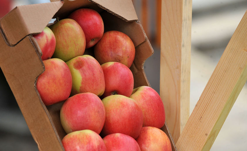 High angle view of apples in crate