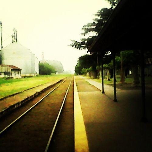 De película.. Silencioso y Ordenado y No se parece en nada a la estación de trenes en Perú... =)