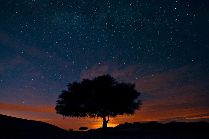 Sky Silhouette Beauty In Nature Scenics - Nature Star - Space Tree Astronomy Tranquility Tranquil Scene Orange Color Space Night Plant Nature Sunset Idyllic Non-urban Scene Galaxy Star No People Outdoors Space And Astronomy First Eyeem Photo
