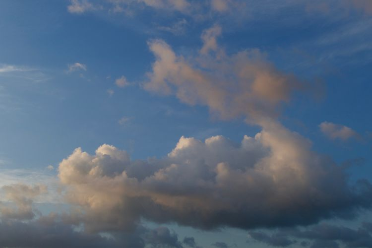 Cloud - Sky Sky Beauty In Nature Scenics - Nature No People Tranquil Scene Outdoors Blue Backgrounds Cloudscape Environment Meteorology Idyllic Fluffy Dramatic Sky Day Nature Low Angle View Tranquility Skyscape