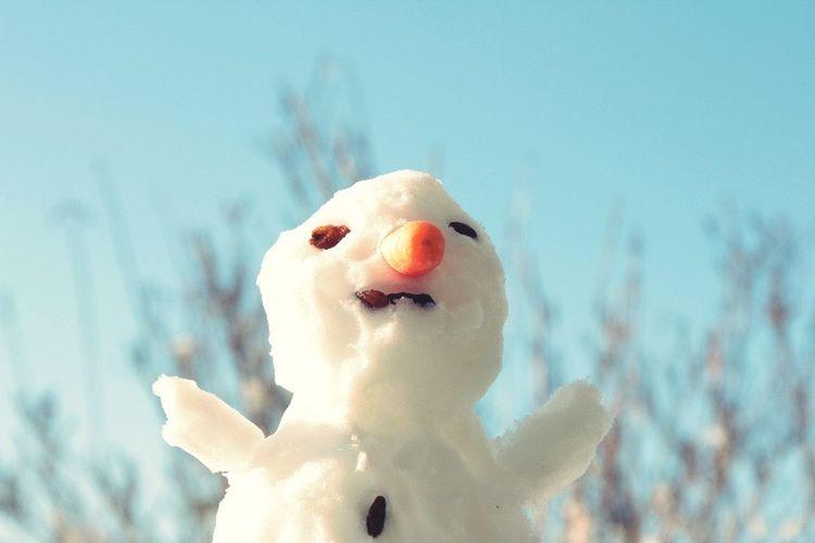 Last Christmas.... Snowman Schneemann Wintertime Winterzeit Winter Tadaa Community Hello World Have A Great Day Christmas Time Weihnachtszeit Christmastime Whatever