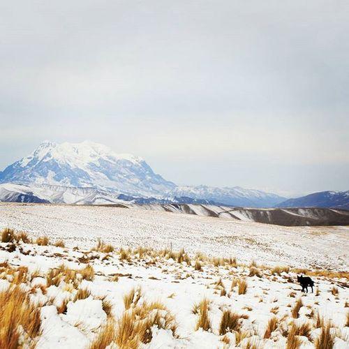 Illimani Lapaz Bolivia Illimani, a mountain in the Cordillera Real