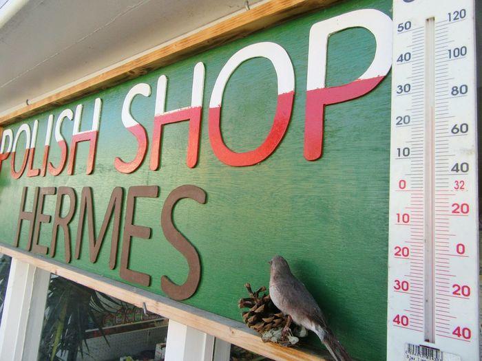 Temperature rising Heat Heat - Temperature Heatwave Thermometer Polish Shop Polska Shop Signs Kenmare Co Kerry Wildatlanticway Ireland