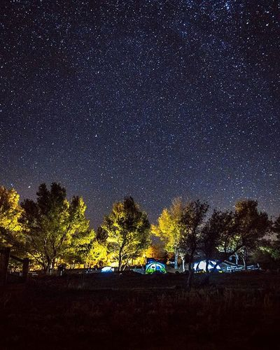 I'm jealous of these campers while I'm just in Cuyamaca for the stars. Took this a while back with @g0ldschlager and @ups.dc. ____________________________ 16mm, Canon 5d Mark III (8 seconds, 2500 ISO, f/2.8) ____________________________ Exploretocreate Streetdreamsmag Artofvisuals Visualsoflife Livefolk Instagoodmyphoto @instagood Thecreative VSCO HSDailyFeature Creativevagrants Byfolk Mobilemag Illgrammers Createcommune Way2ill Wildnernessculture Moodygrams Fatalframes Heatercentral Travelawesome Longexposure Canon_photos @Canon_photos Killyourcity Mkexplore Space milkyway natgeospace lightpainting stars exploresandiego
