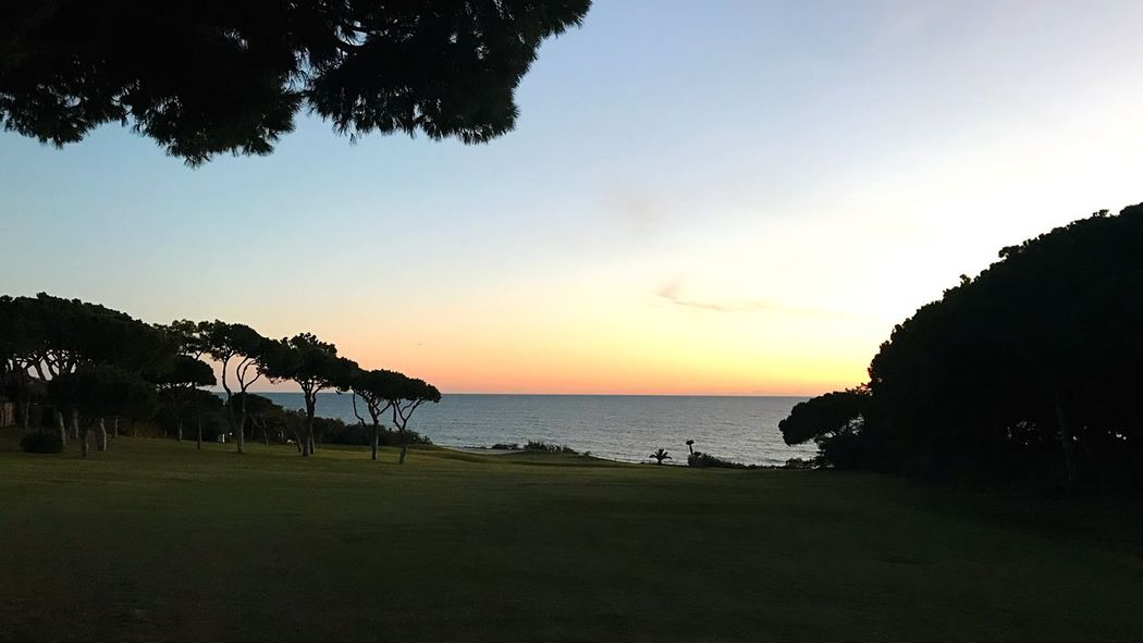 End of my day Sunset Guanilho Duarte Guanilho Sea Beach Scenics Silhouette Sunset Nature Beauty In Nature Tranquil Scene Tranquility Tree Water Landscape Horizon Over Water No People Sky Outdoors Grass Day