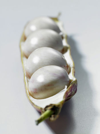 group of borlotti beans over white background Borlotti Beans Close-up Cross Section Cut Out Food Food And Drink Freshness Healthy Eating High Angle View In A Row Indoors  Ingredient No People Nourishment Nutrition Produce Selective Focus Single Object Still Life Studio Shot White Background