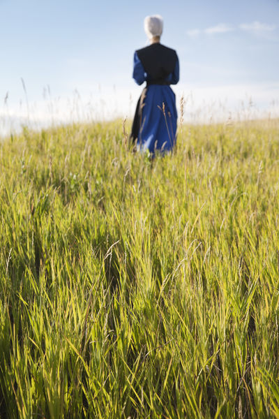 Amish woman in blue dress and black cape in a field Afternoon Amish Amish Country Apron Black Blonde Blue Bonnet Cape  Dress Field Girl Growth Pensive Religion Religious Beliefs Selective Focus Serious Sky And Clouds Sunlight Sunlight ☀ Walking Woman