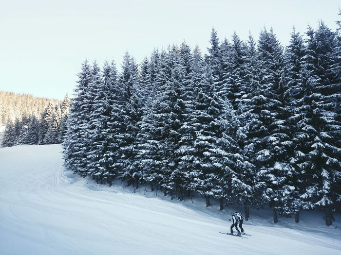People Nature Snow Trees Landscape Nature_collection