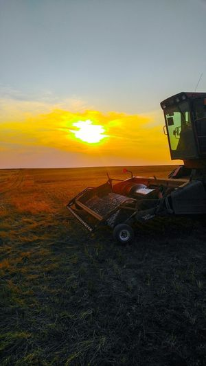 Sunset Sky No People Cloud - Sky Outdoors Nature Rural Scene Day Amber Waves Of Grain Check This Out 😊 Landscape Montanamoment BigSkyCountry Agriculture Check This Out Dramatic Sky Farm Crop  Sunlight Lens Flare Gold Colored Harvester Harvest Season