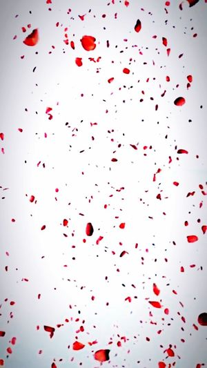 Red Confetti Celebration No People Large Group Of Objects Emotion White Color