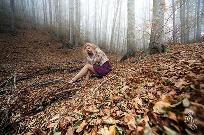 Colors Of Autumn Pensiero Persa Shooting