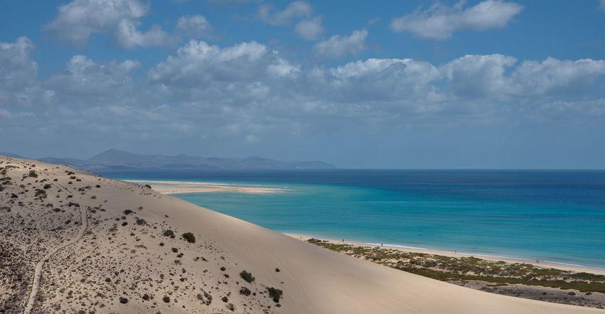 Water Nature Animal Themes Day Outdoors SPAIN Sunlight Beach Fuerteventura Kanaria Sand Kanarische Inseln