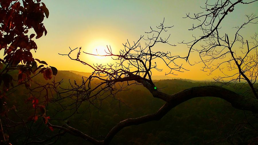 Dusk Sun Nature Tree Landscape Beauty In Nature Moto X Play Sundown Landscape Strange Terrain Chhattisgarh,India Dalli Rajhara