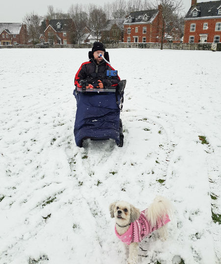 Outdoors Field Canine Warm Clothing Snow Winter Cold Temperature Pets Dog Wheelchair