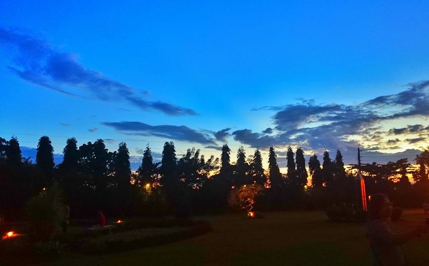 Learn & Shoot: After Dark Theruinslawn Lawn Lowlights