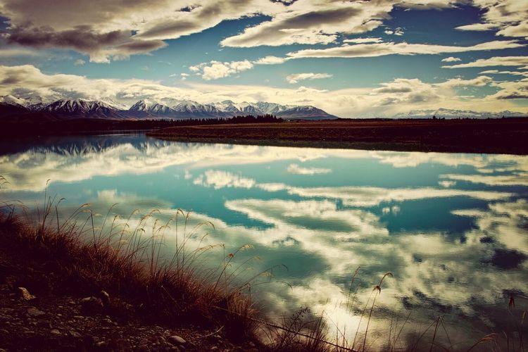 NZ Dp1m Travel