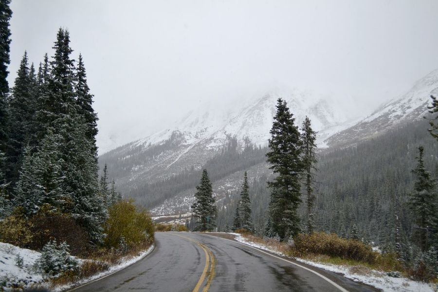 Aspen Beauty In Nature Cold Temperature Day Diminishing Perspective Direction Dividing Line Mountain Nature No People Outdoors Pine Tree Plant Road Scenics - Nature Sign Sky Snow Snowing The Way Forward Tranquil Scene Tranquility Transportation Tree Winter