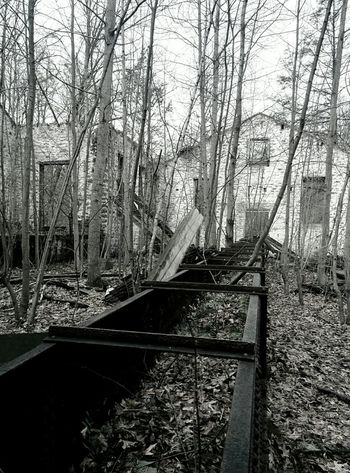 Abandoned Buildings Urban Exploration A Walk In The Woods Ruins