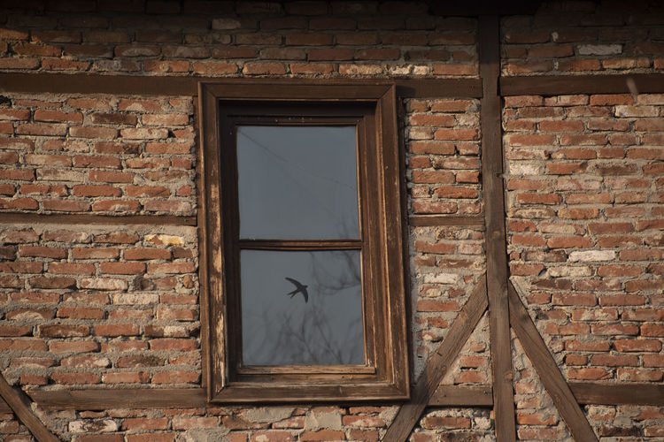 Architecture Brick Wall Brick Window Built Structure Wall Building No People Building Exterior Wall - Building Feature Glass - Material Day Old House Abandoned Damaged Outdoors Broken Wood - Material Shape Window Frame
