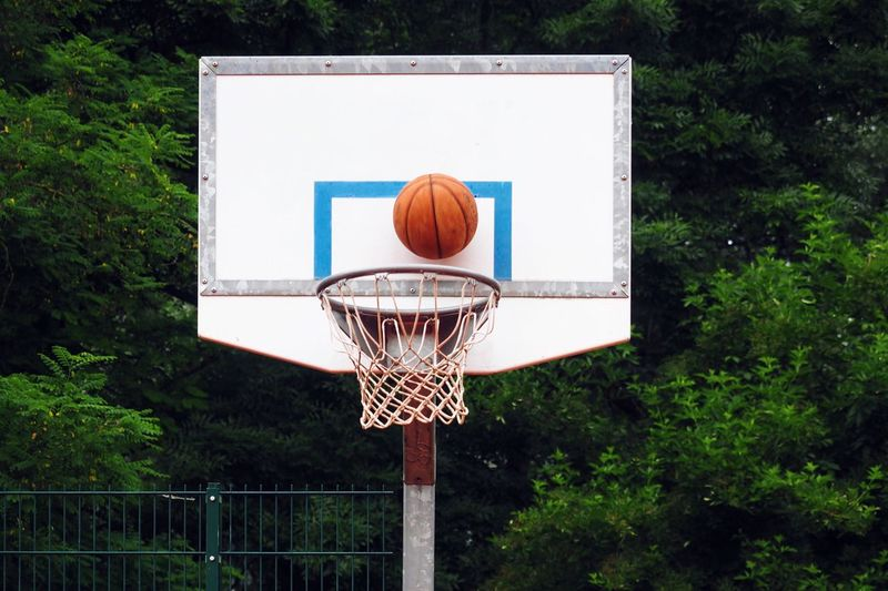 Basketball Sport Basketball Hoop Basketball - Sport Court Basketball Net - Sports Equipment Day Competitive Sport Outdoors Competition Basketball Player Close-up