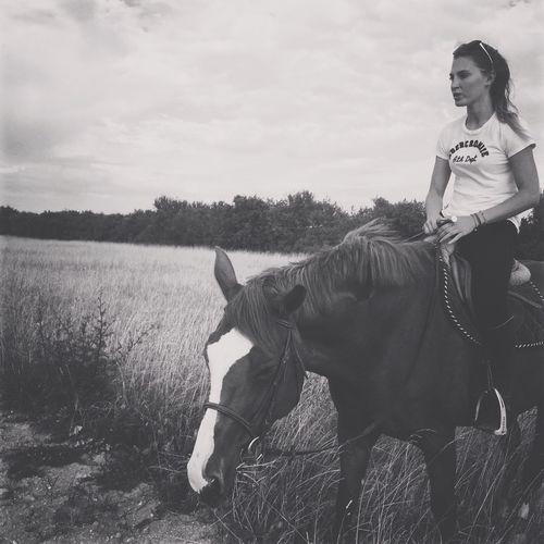 Memories Horse Love Summertime Sadness